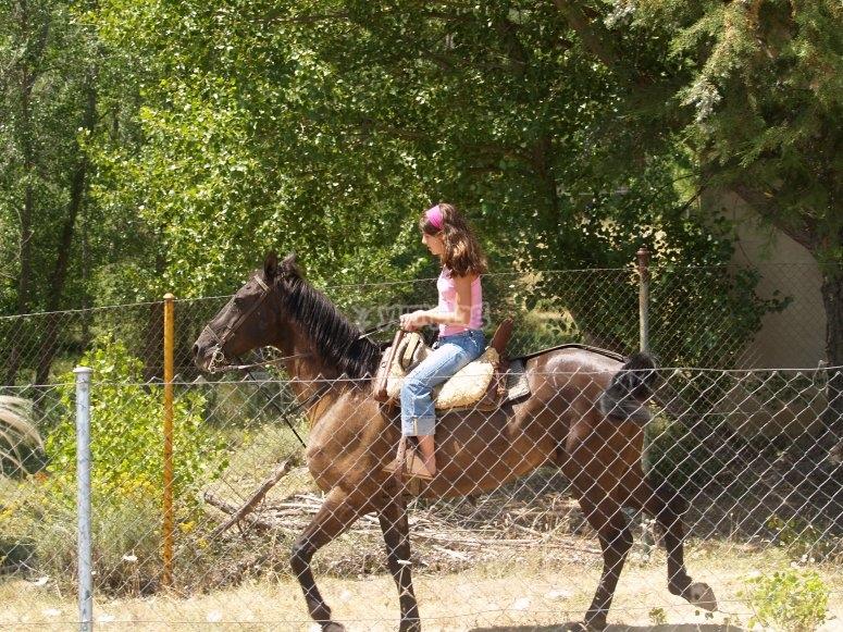 Experiencia de equitación