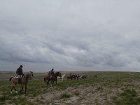 On horseback in Jerez de la Frontera
