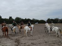 Horse riding in Jerez