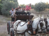 rutas en carruaje