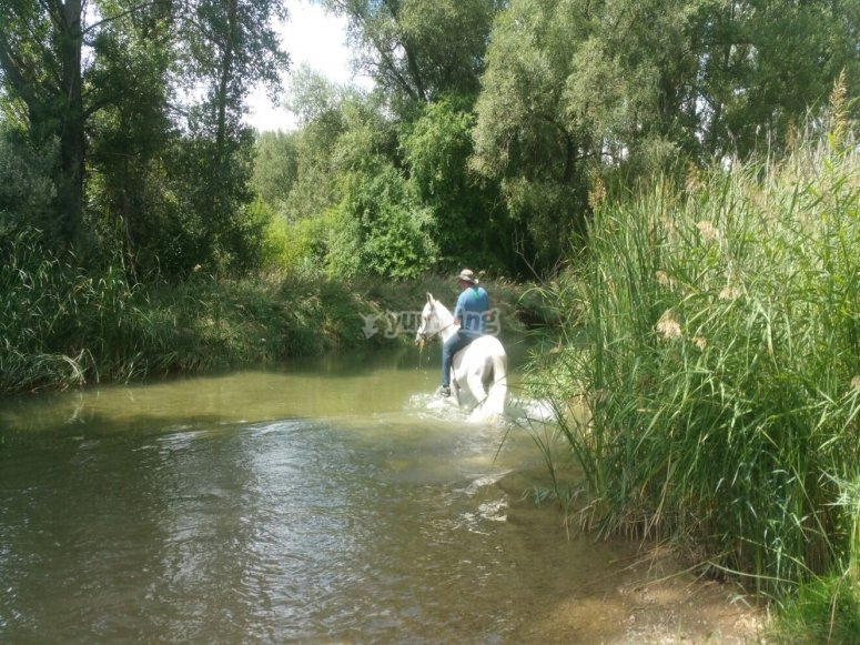 Ruta por el río