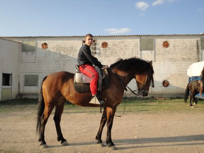 骑马+上课+食物。 90分钟