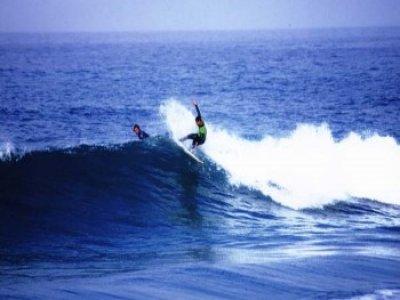Marea Surf
