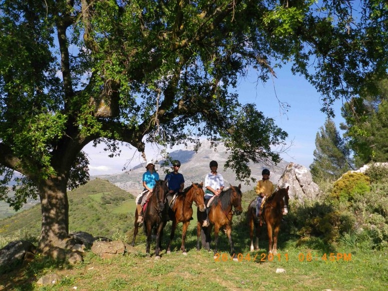 Horse riding in the mountains