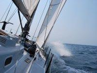 Barco Decision 7.5