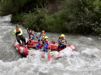 Monitor with rafting group