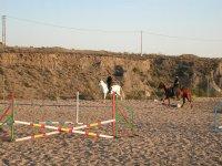 Clases de salto de obstáculos