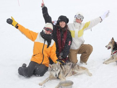 Dog Sledding Tour in Dossau forest 3,5 km