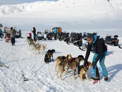 Dog Sledding tour across Montgarri 90 min
