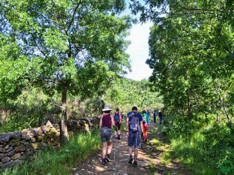 Ruta de Senderismo de la chorrera de San Mamés - Foto de senderismomadrid.es