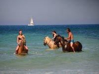 Taking a bath on horseback