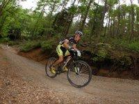bici en el bosque