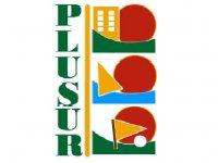 Plusur Team Building
