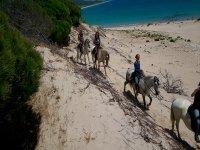 骑在沙丘距离海滩女孩养反观