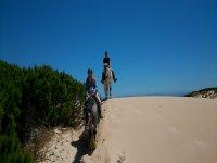 Cabalgando sobre las dunas
