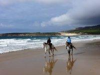 路线安静的夫妇在海滩上