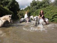 马骑马游览