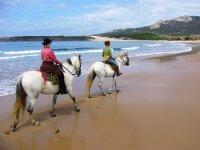 骑着白马沿着海岸