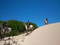 Caballos en las dunas