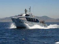 Travesias en barco en busca de cetaceos