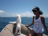 Con el perro en la neumatica