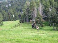 Tirolina sobre paisaje verde