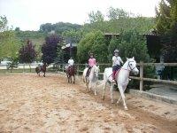 Alumnos con los caballos en la pista