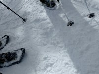 雪中的手杖和雪鞋