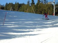 Competition ski