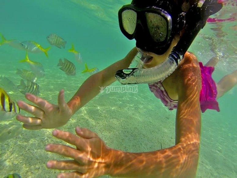 Practica de snorkel