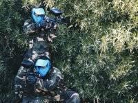 Jugadores con mascara azul