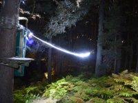 Tirolinas nocturnas