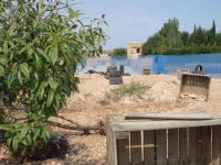 Paintball game in Albacete or Murcia