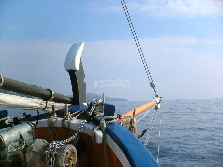 Proa del barco