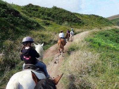 1 ora per passeggiate a cavallo a Covarrubias