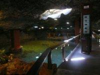 skylight in the aquarium
