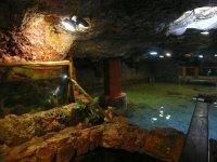 vista del acuario