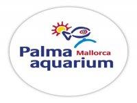 Palma Aquarium Aquariums