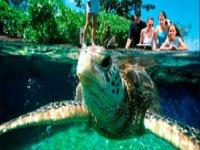 Jardines y acuarios interactivos