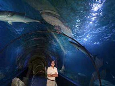 Aquarium Almuñecar