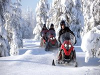 Friends on snowmobiles