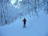 Cross-country skiing activity