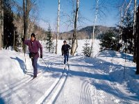 Couple doing cross-country skiing