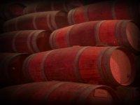 Las barricas en las que descansa el vino