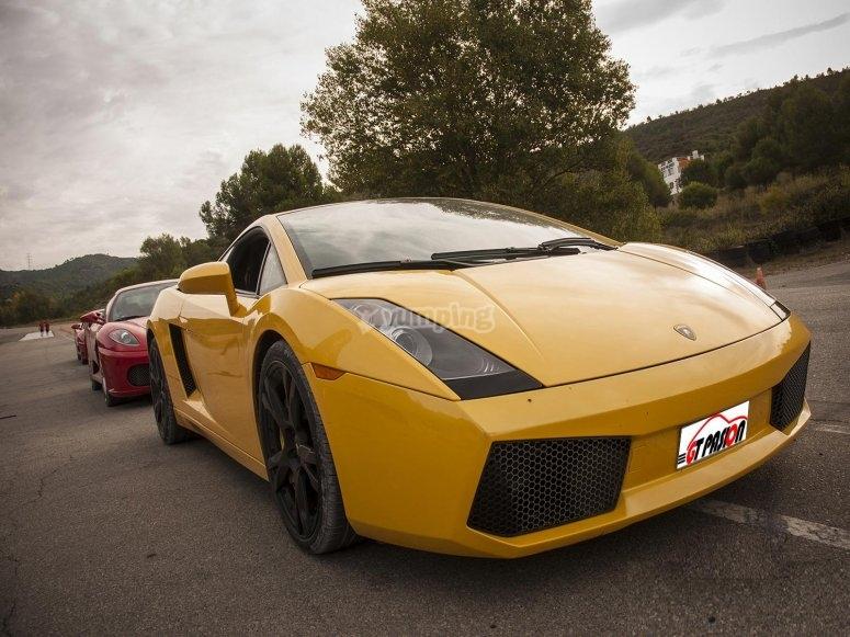 Come to drive a Lamborghini