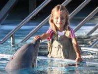 Tocando un delfin