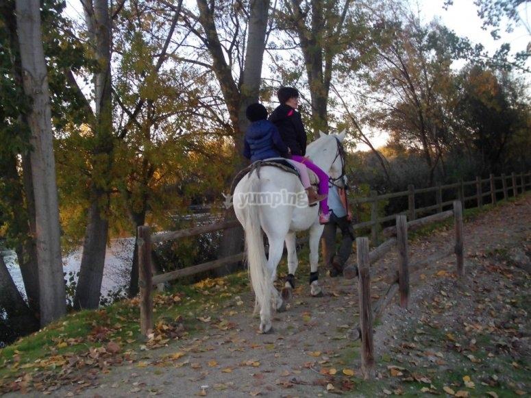 Ninos en el caballo
