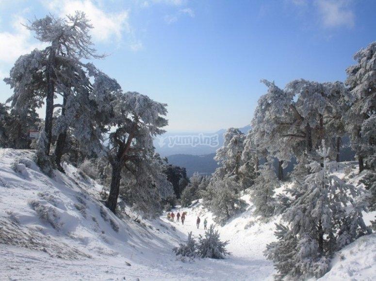 Ruta de Raquetas de Nieve por Camino Schmidt