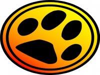 Colectivo Cuatro Gatos Kayaks
