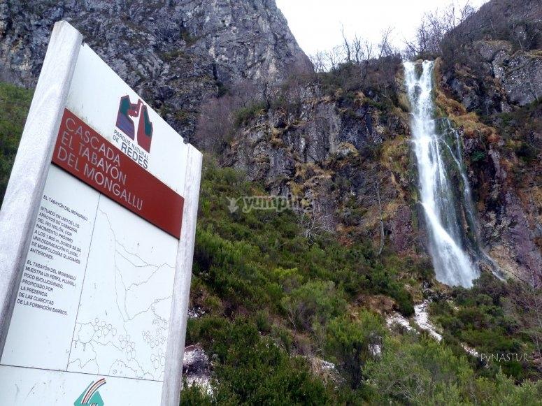 Ruta de La Cascada del Tobayón del Mongayo